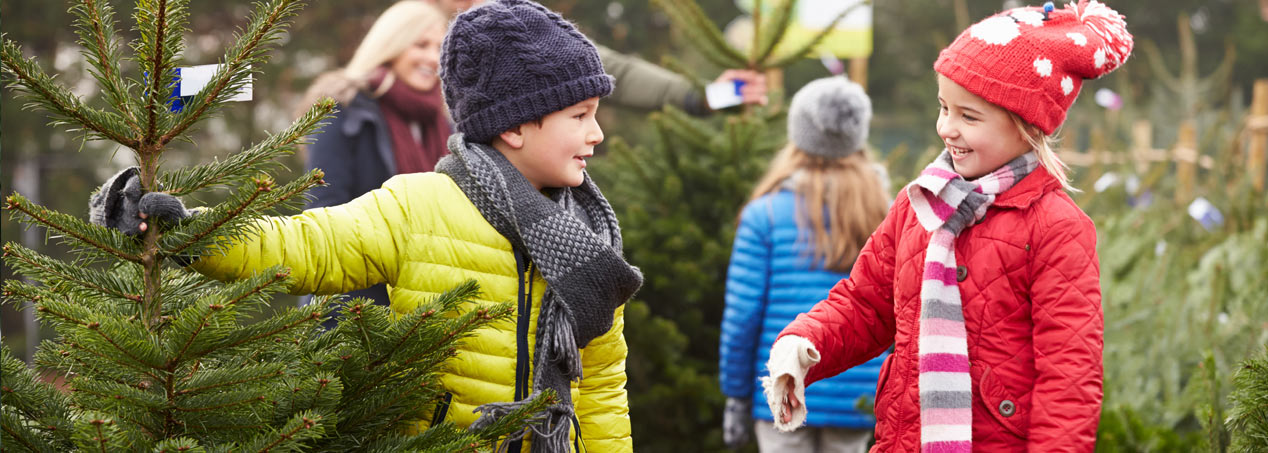 Picking a tree is a family event!