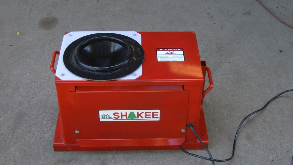 Little-Shakee-temp-03 (1)